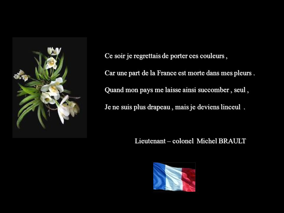 Ce soir je regrettais de porter ces couleurs, Car une part de la France est morte dans mes pleurs.