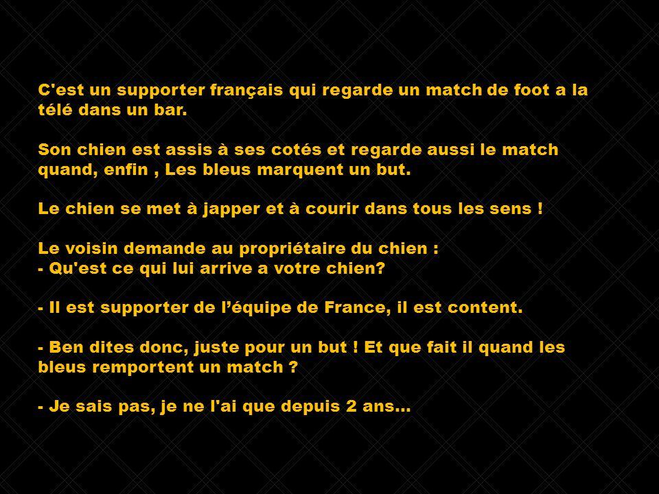 C'est un supporter français qui regarde un match de foot a la télé dans un bar. Son chien est assis à ses cotés et regarde aussi le match quand, enfin