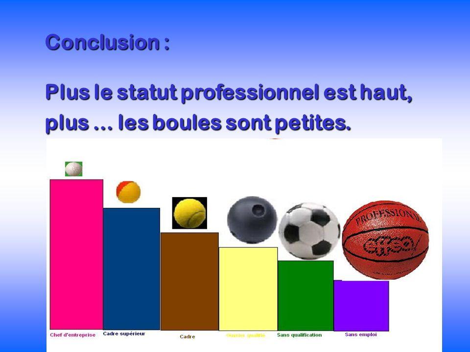 Conclusion : Plus le statut professionnel est haut, plus... les boules sont petites.