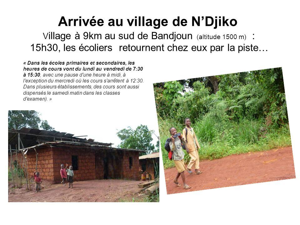 Arrivée au village de NDjiko V illage à 9km au sud de Bandjoun (altitude 1500 m) : 15h30, les écoliers retournent chez eux par la piste… « Dans les écoles primaires et secondaires, les heures de cours vont du lundi au vendredi de 7:30 à 15:30, avec une pause d une heure à midi, à l exception du mercredi où les cours s arrêtent à 12:30.
