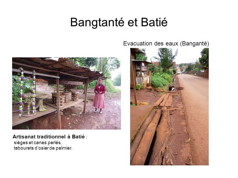 Bangtanté et Batié Evacuation des eaux (Banganté) Artisanat traditionnel à Batié : sièges et canes perlés, tabourets dosier de palmier.