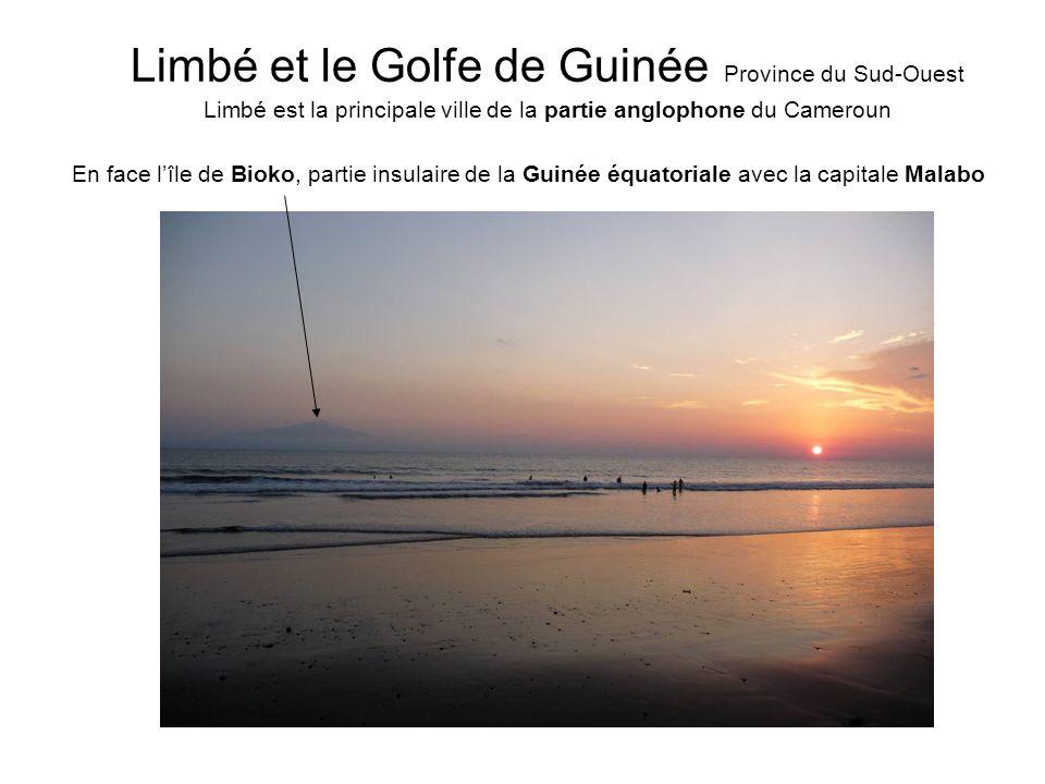 Devant nous : LOcéan atlantique Seme Beach, à quelques kilomètres de Limbé, proche de la frontière nigérienne palétuviersSables volcaniques