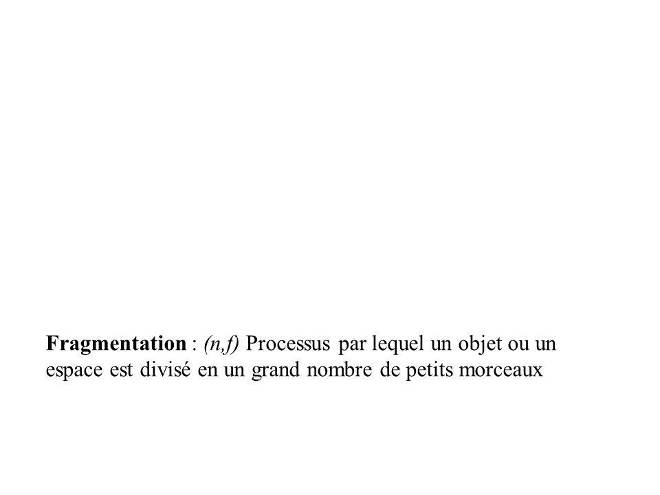 Fragmentation : (n,f) Processus par lequel un objet ou un espace est divisé en un grand nombre de petits morceaux