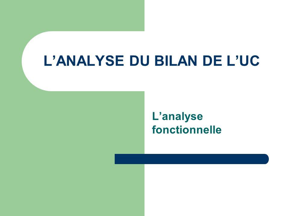 LANALYSE DU BILAN DE LUC Lanalyse fonctionnelle