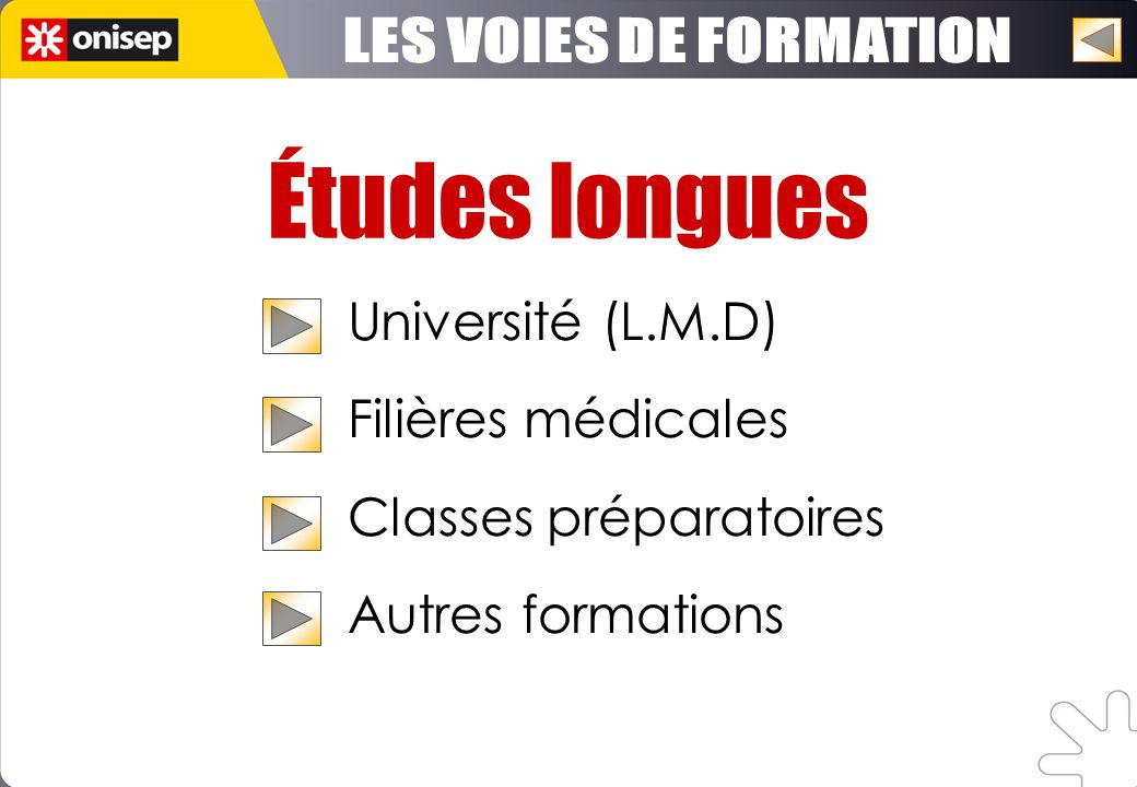 Études longues Université (L.M.D) Filières médicales Classes préparatoires Autres formations