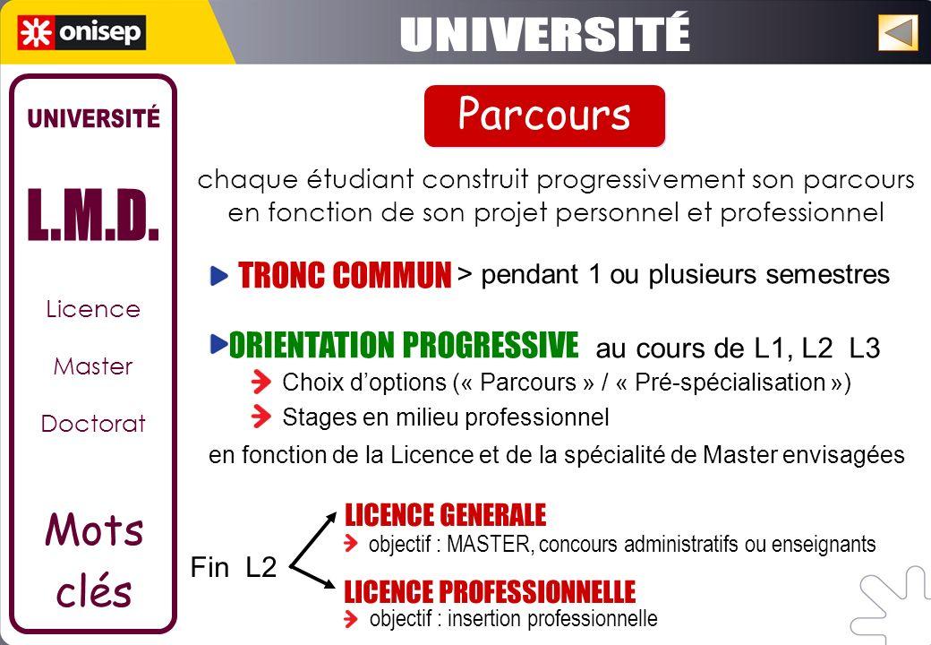 Licence Master Doctorat Mots clés chaque étudiant construit progressivement son parcours en fonction de son projet personnel et professionnel TRONC CO