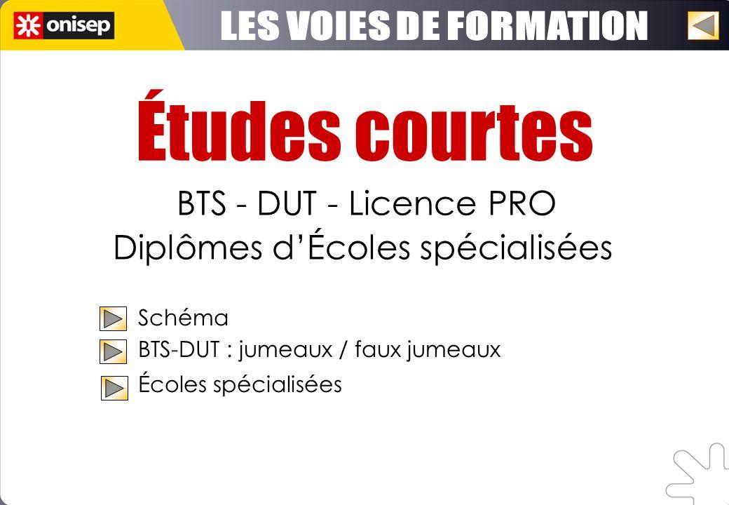 Études courtes BTS - DUT - Licence PRO Diplômes dÉcoles spécialisées Schéma BTS-DUT : jumeaux / faux jumeaux Écoles spécialisées