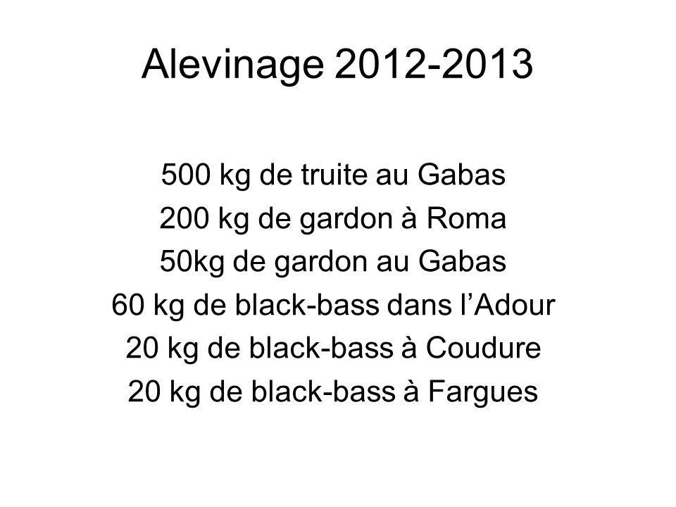 Alevinage 2012-2013 500 kg de truite au Gabas 200 kg de gardon à Roma 50kg de gardon au Gabas 60 kg de black-bass dans lAdour 20 kg de black-bass à Co