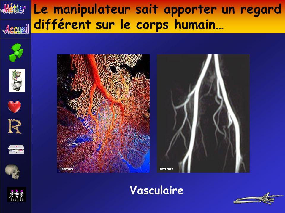 Le manipulateur sait apporter un regard différent sur le corps humain… Vasculaire Internet