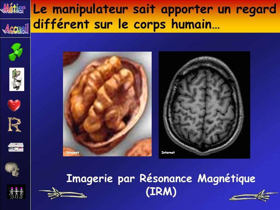Le manipulateur sait apporter un regard différent sur le corps humain… Imagerie par Résonance Magnétique (IRM) Internet