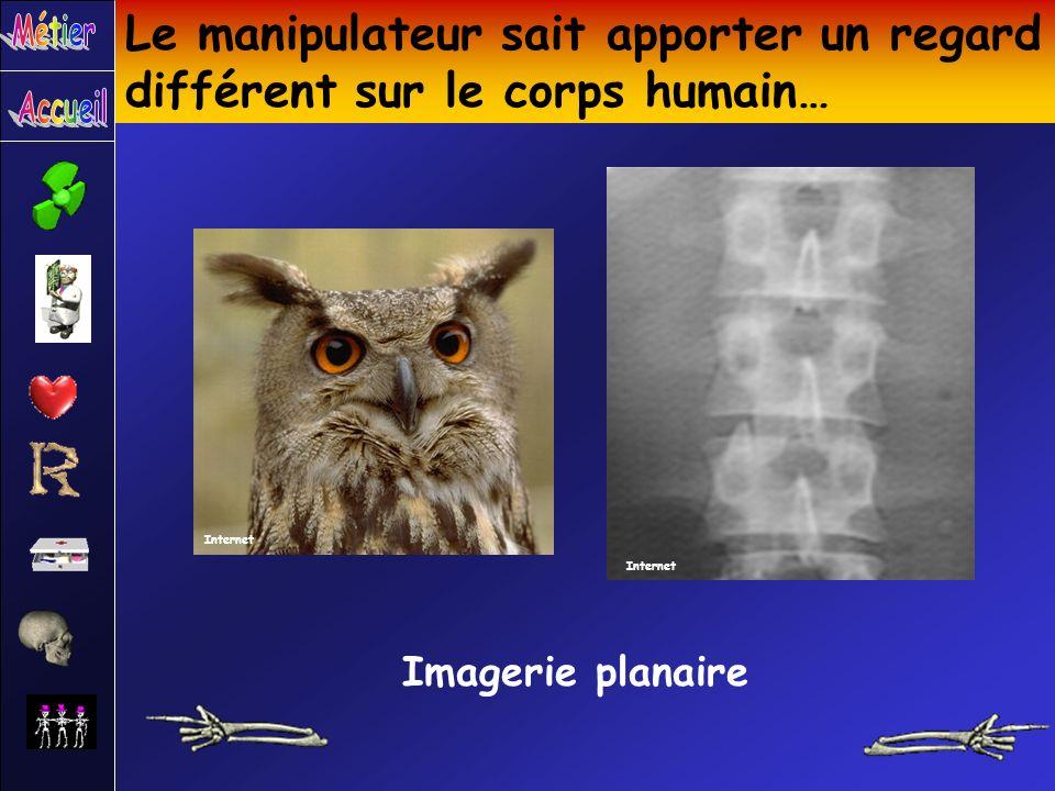 Le manipulateur sait apporter un regard différent sur le corps humain… Imagerie planaire Internet
