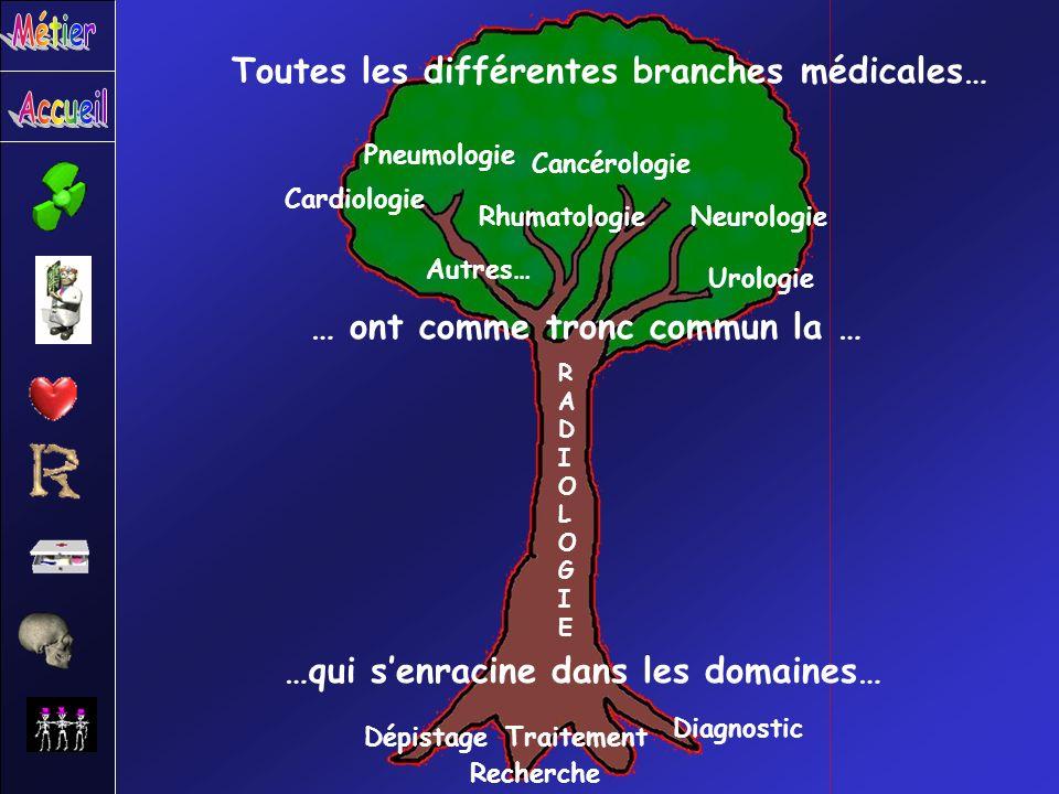 Toutes les différentes branches médicales… … ont comme tronc commun la … RADIOLOGIERADIOLOGIE …qui senracine dans les domaines… Dépistage Recherche Tr