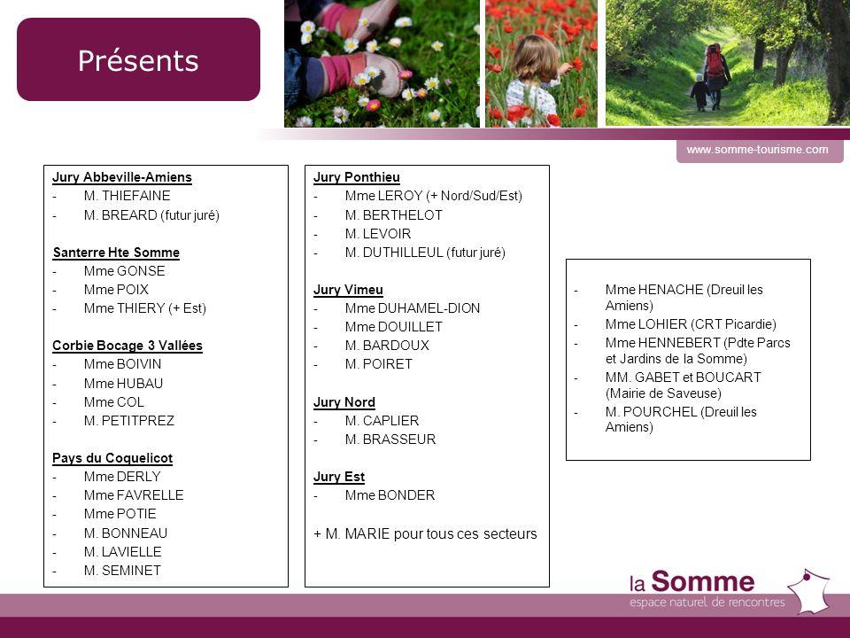 Rapport dactivités www.somme-tourisme.com Bilan 2010