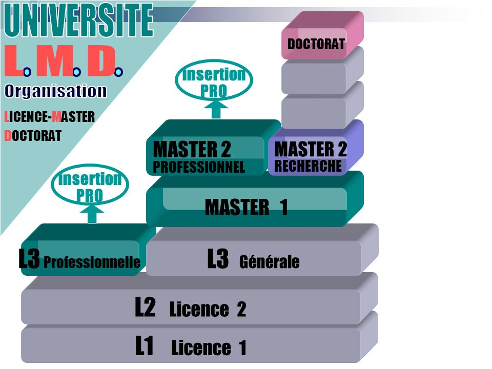 L1 Licence 1 L2 Licence 2 L3 Professionnelle LICENCE-MASTER DOCTORAT L3 Générale MASTER 1 MASTER 2 PROFESSIONNEL MASTER 2 RECHERCHE DOCTORAT insertion