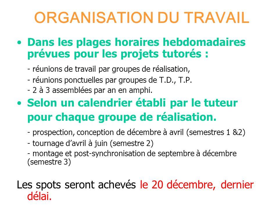 ORGANISATION DU TRAVAIL Dans les plages horaires hebdomadaires prévues pour les projets tutorés : - réunions de travail par groupes de réalisation, -