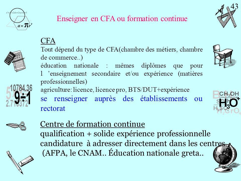 Enseigner dans une structure spécifique Ministère de l emploi, de la solidarité cohésion social et logement Dans une structure privée (association): s