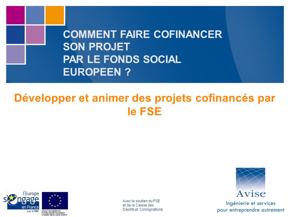 COMMENT FAIRE COFINANCER SON PROJET PAR LE FONDS SOCIAL EUROPEEN .