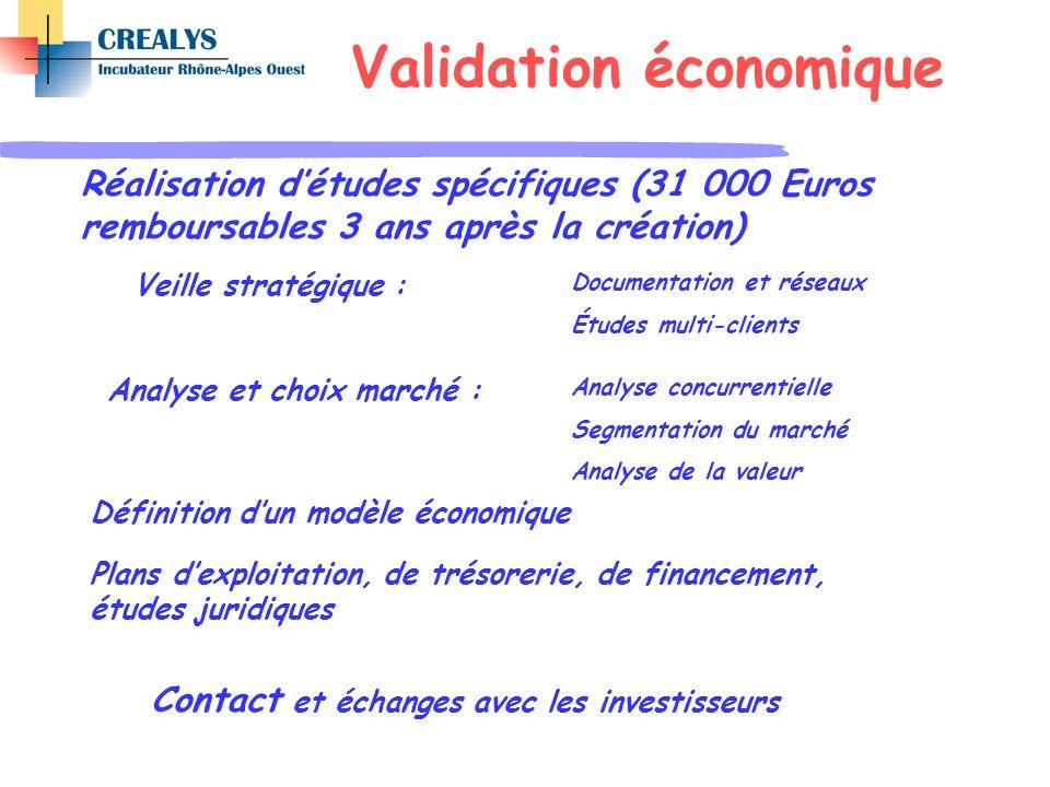 Veille stratégique : Définition dun modèle économique Plans dexploitation, de trésorerie, de financement, études juridiques Contact et échanges avec l