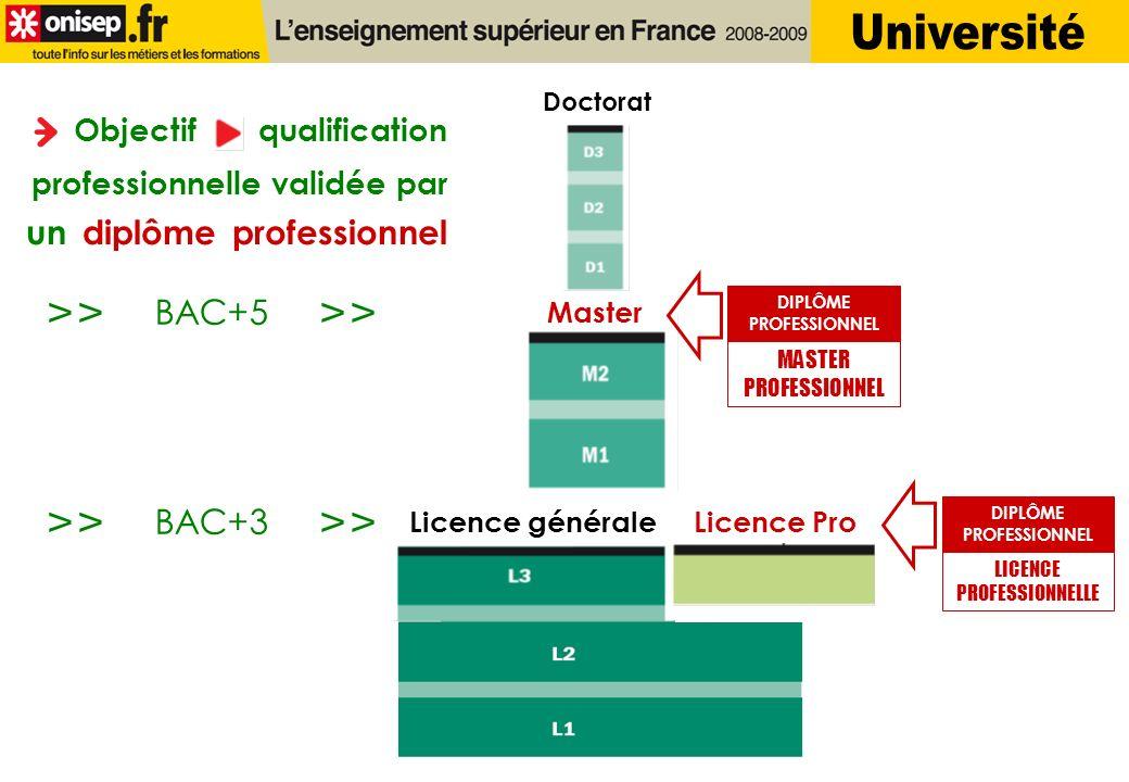 Doctorat Master Licence généraleLicence Pro Objectif qualification professionnelle validée par un diplôme professionnel LICENCE PROFESSIONNELLE DIPLÔM