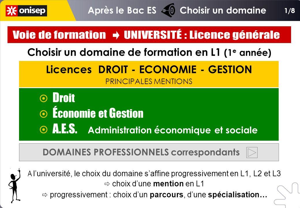 Licences DROIT - ECONOMIE - GESTION PRINCIPALES MENTIONS D roit É conomie et G estion A.E.S. Administration économique et sociale DOMAINES PROFESSIONN