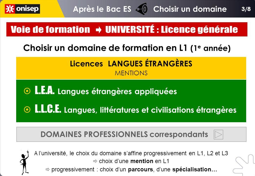 Licences LANGUES ÉTRANGÈRES MENTIONS Choisir un domaine de formation en L1 (1 e année) L.E.A. Langues étrangères appliquées L.L.C.E. Langues, littérat