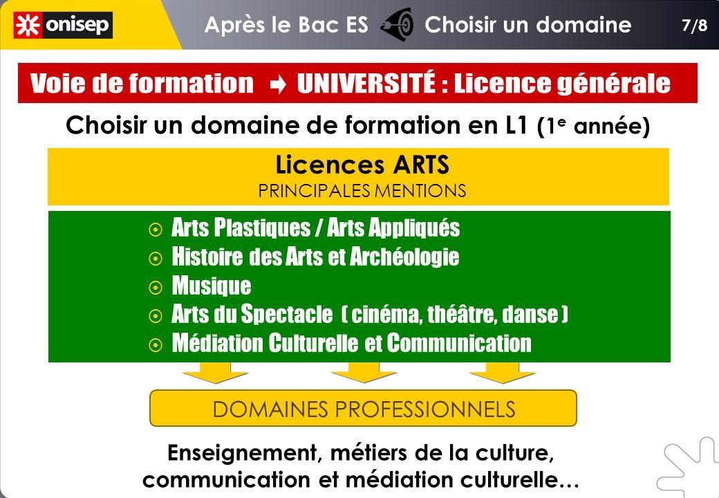 Choisir un domaine de formation en L1 (1 e année) Licences ARTS PRINCIPALES MENTIONS DOMAINES PROFESSIONNELS Enseignement, métiers de la culture, comm