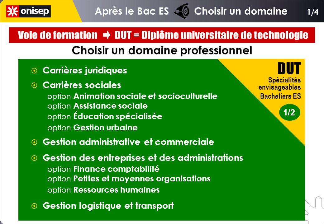 Choisir un domaine professionnel Carrières juridiques Carrières sociales option Animation sociale et socioculturelle option Assistance sociale option