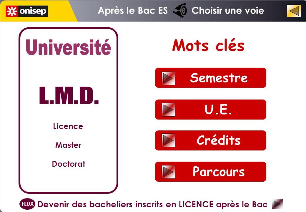 Semestre U.E. Crédits Parcours Mots clés Licence Master Doctorat Devenir des bacheliers inscrits en LICENCE après le Bac FLUX Après le Bac ES Choisir