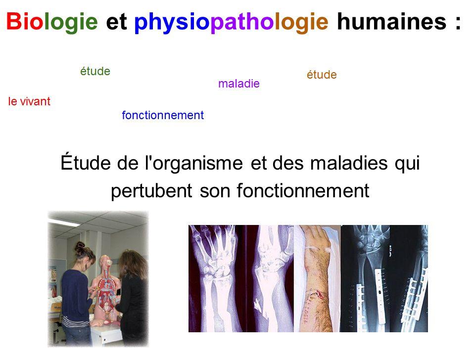 Biologie et physiopathologie humaines : Étude de l organisme et des maladies qui pertubent son fonctionnement