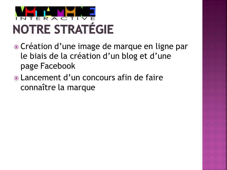 Création dune image de marque en ligne par le biais de la création dun blog et dune page Facebook Lancement dun concours afin de faire connaître la marque