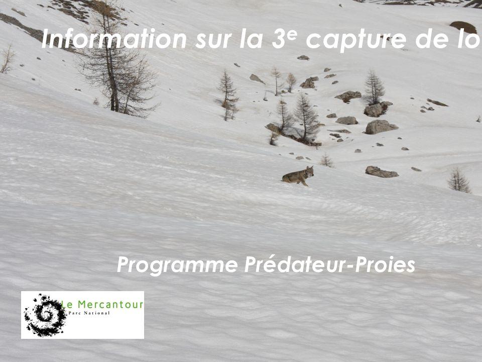 Programme Prédateur-Proies Information sur la 3 e capture de loup