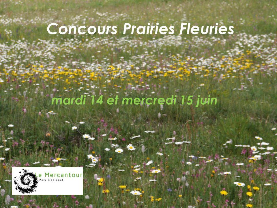 Concours Prairies Fleuries mardi 14 et mercredi 15 juin