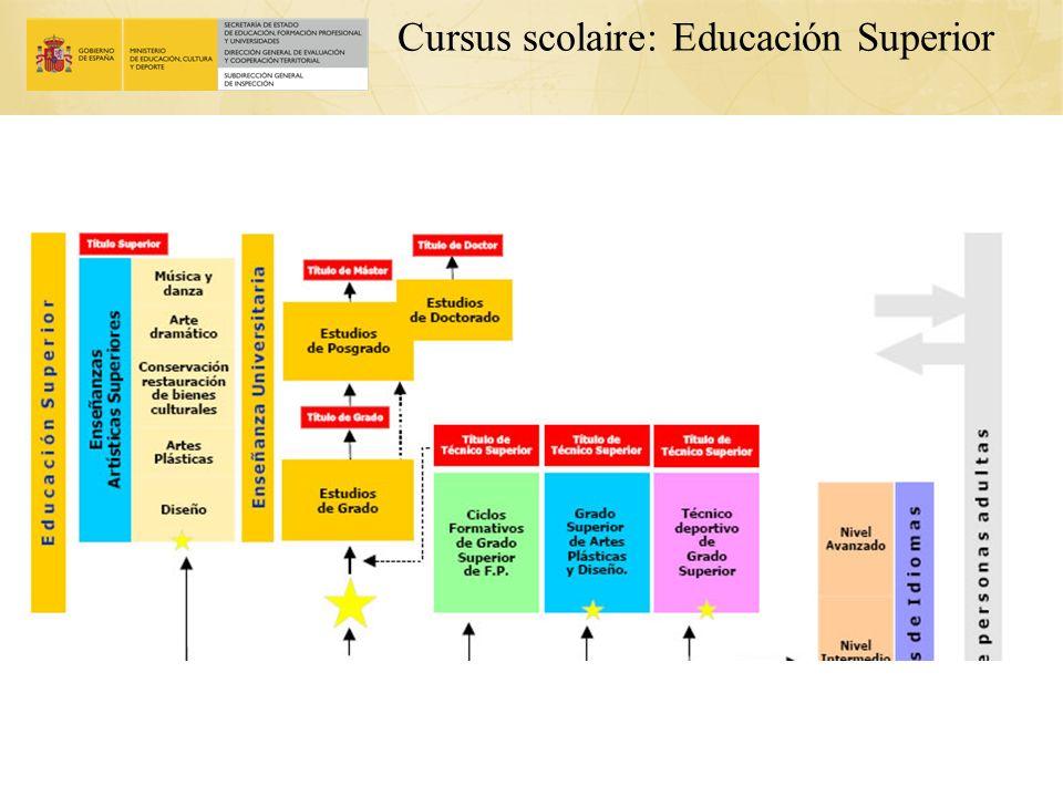 Cursus scolaire: Educación Superior