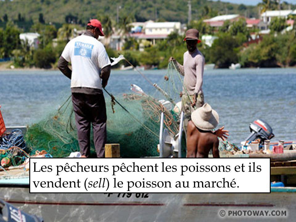 Les pêcheurs pêchent les poissons et ils vendent ( sell ) le poisson au marché.
