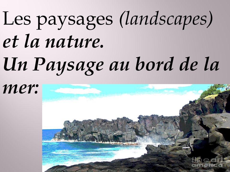 Les paysages (landscapes) et la nature. Un Paysage au bord de la mer: