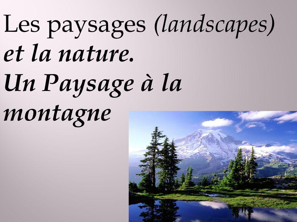 Les paysages (landscapes) et la nature. Un Paysage à la montagne