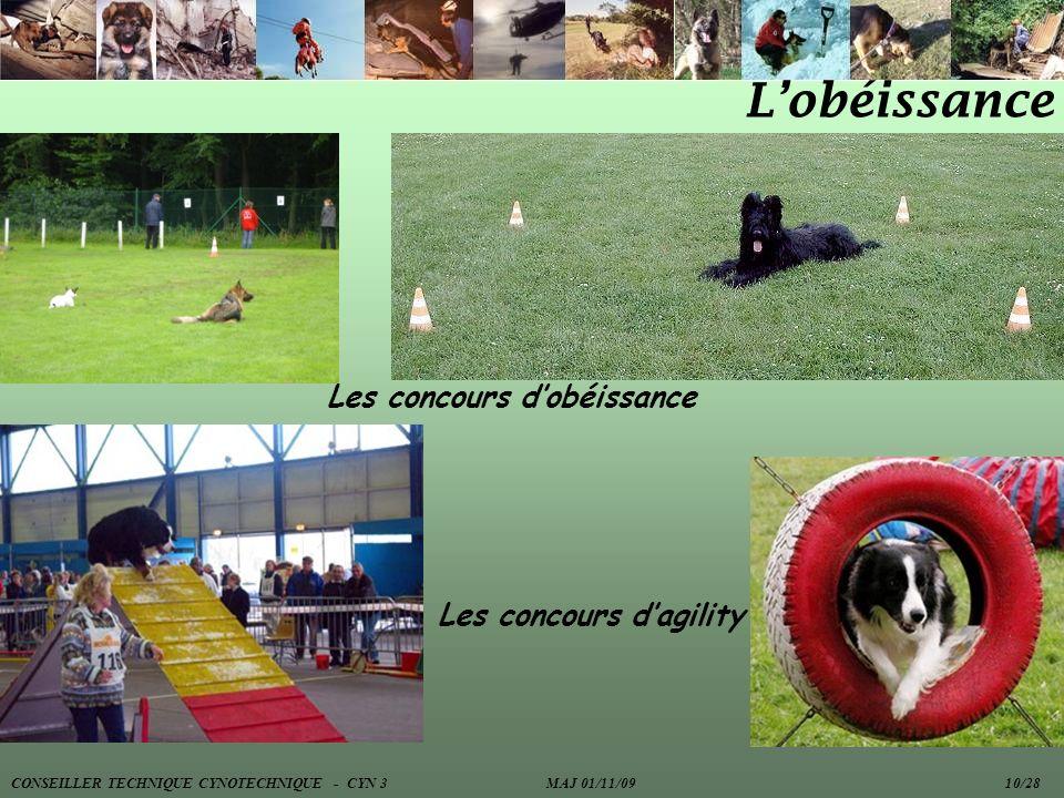 Lobéissance Les concours dobéissance Les concours dagility CONSEILLER TECHNIQUE CYNOTECHNIQUE - CYN 3 MAJ 01/11/09 10/28
