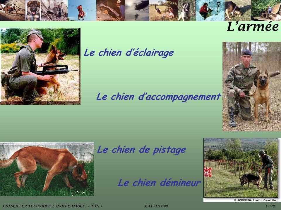 Larmée Le chien déclairage Le chien daccompagnement Le chien de pistage Le chien démineur CONSEILLER TECHNIQUE CYNOTECHNIQUE - CYN 3 MAJ 01/11/09 17/2
