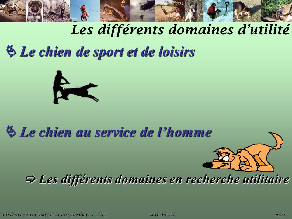 Les différents domaines dutilité Le chien de sport et de loisirs Le chien de sport et de loisirs Le chien au service de lhomme Le chien au service de