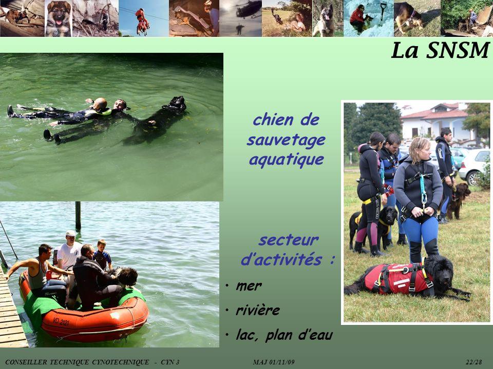 La SNSM chien de sauvetage aquatique secteur dactivités : mer rivière lac, plan deau CONSEILLER TECHNIQUE CYNOTECHNIQUE - CYN 3 MAJ 01/11/09 22/28