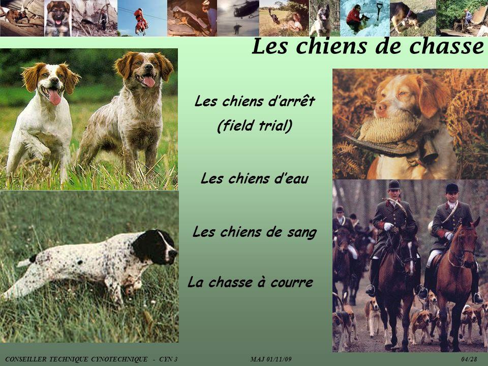 Les chiens de chasse Les chiens darrêt (field trial) Les chiens deau Les chiens de sang La chasse à courre CONSEILLER TECHNIQUE CYNOTECHNIQUE - CYN 3