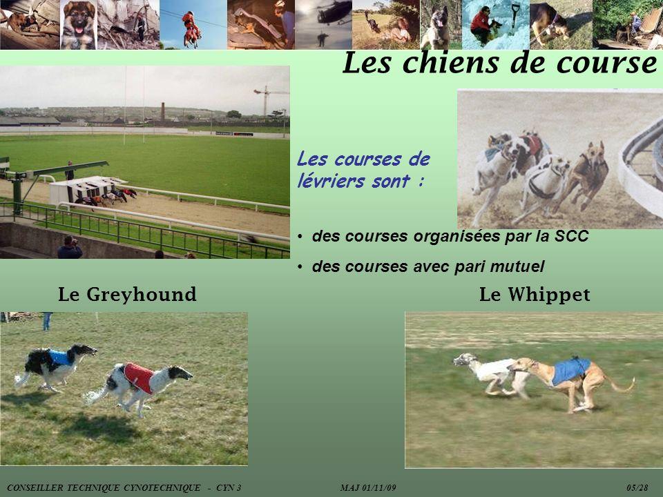 Les chiens de course Les courses de lévriers sont : des courses organisées par la SCC des courses avec pari mutuel Le GreyhoundLe Whippet CONSEILLER T