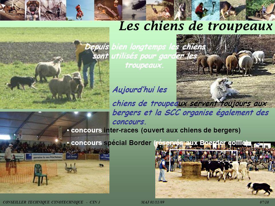 Les chiens de troupeaux Depuis bien longtemps les chiens sont utilisés pour garder les troupeaux. Aujourdhui les chiens de troupeaux servent toujours