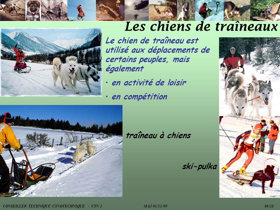 Les chiens de traîneaux Le chien de traîneau est utilisé aux déplacements de certains peuples, mais également en activité de loisir en compétition tra