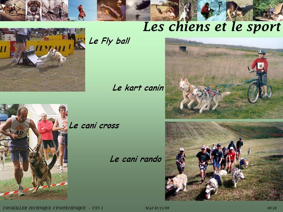 Les chiens et le sport Le Fly ball Le cani cross Le kart canin Le cani rando CONSEILLER TECHNIQUE CYNOTECHNIQUE - CYN 3 MAJ 01/11/09 09/28