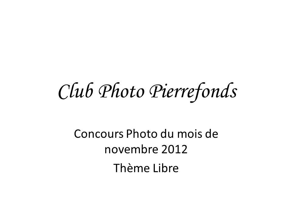 Club Photo Pierrefonds Concours Photo du mois de novembre 2012 Thème Libre