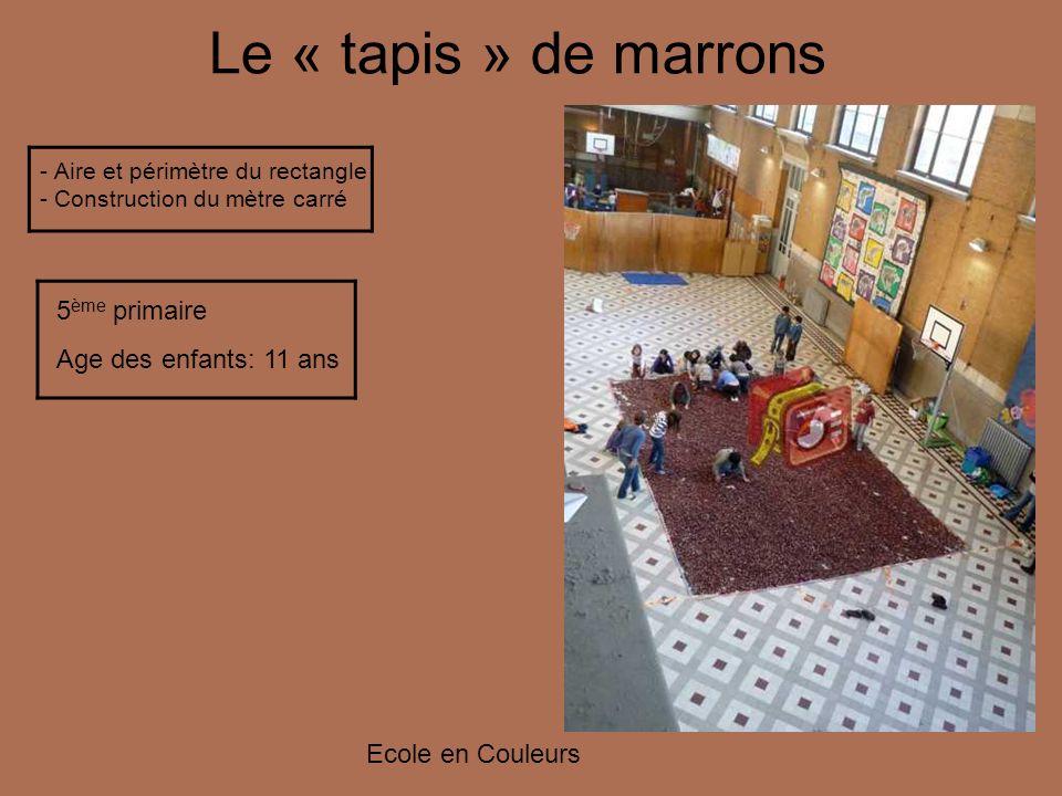 Le « tapis » de marrons - Aire et périmètre du rectangle - Construction du mètre carré 5 ème primaire Age des enfants: 11 ans Ecole en Couleurs