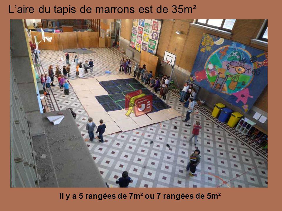 Laire du tapis de marrons est de 35m² Il y a 5 rangées de 7m² ou 7 rangées de 5m²