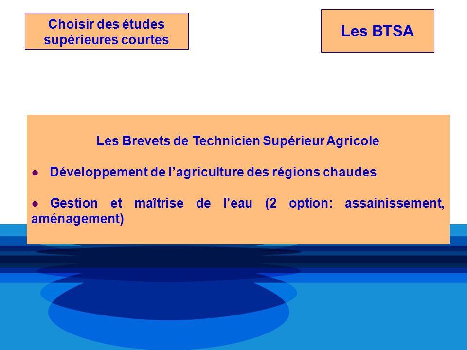 Choisir des études supérieures courtes Les BTSA Les Brevets de Technicien Supérieur Agricole Développement de lagriculture des régions chaudes Gestion