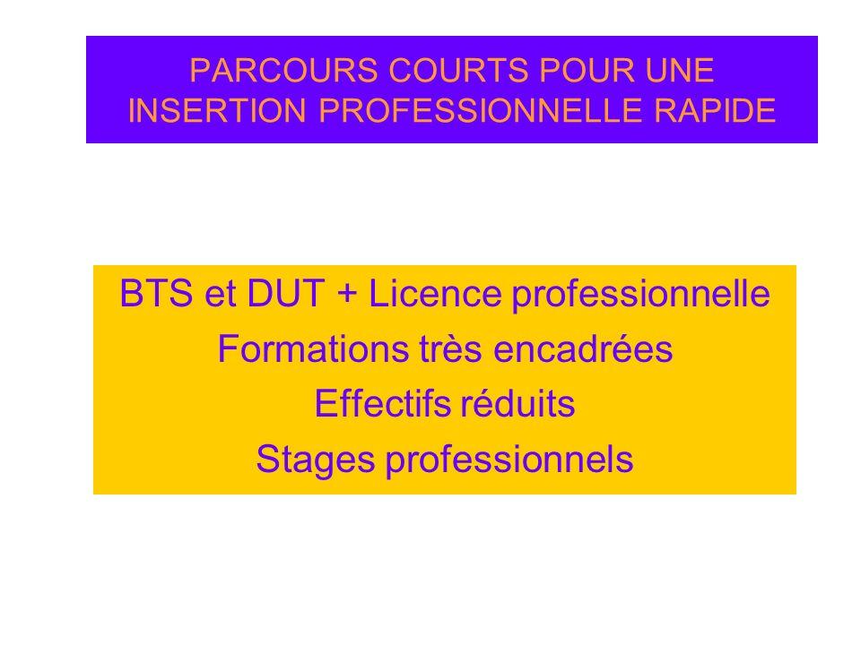 PARCOURS COURTS POUR UNE INSERTION PROFESSIONNELLE RAPIDE BTS et DUT + Licence professionnelle Formations très encadrées Effectifs réduits Stages prof